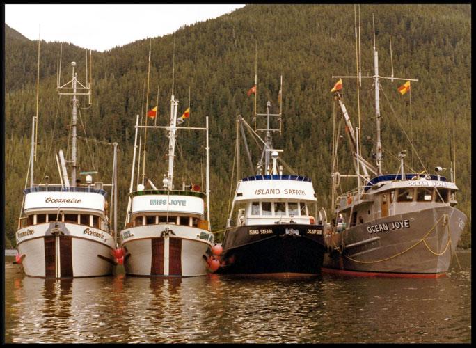 Seine boats anchored